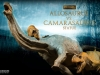 31033-allosaurus-vs-camarasaurus-001