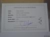 HELLBOY_BUST_CUSTOM_CARLOS_JANUARIO_TOYREVIEW.COM (2)