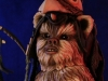 logray_star_wars_ewok_gentle_giant_toyreview-com_-br-1