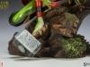 200360-thor-frog-005