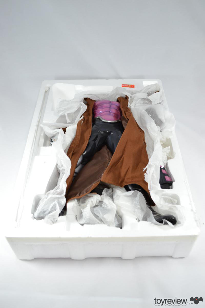 Gambit (9)
