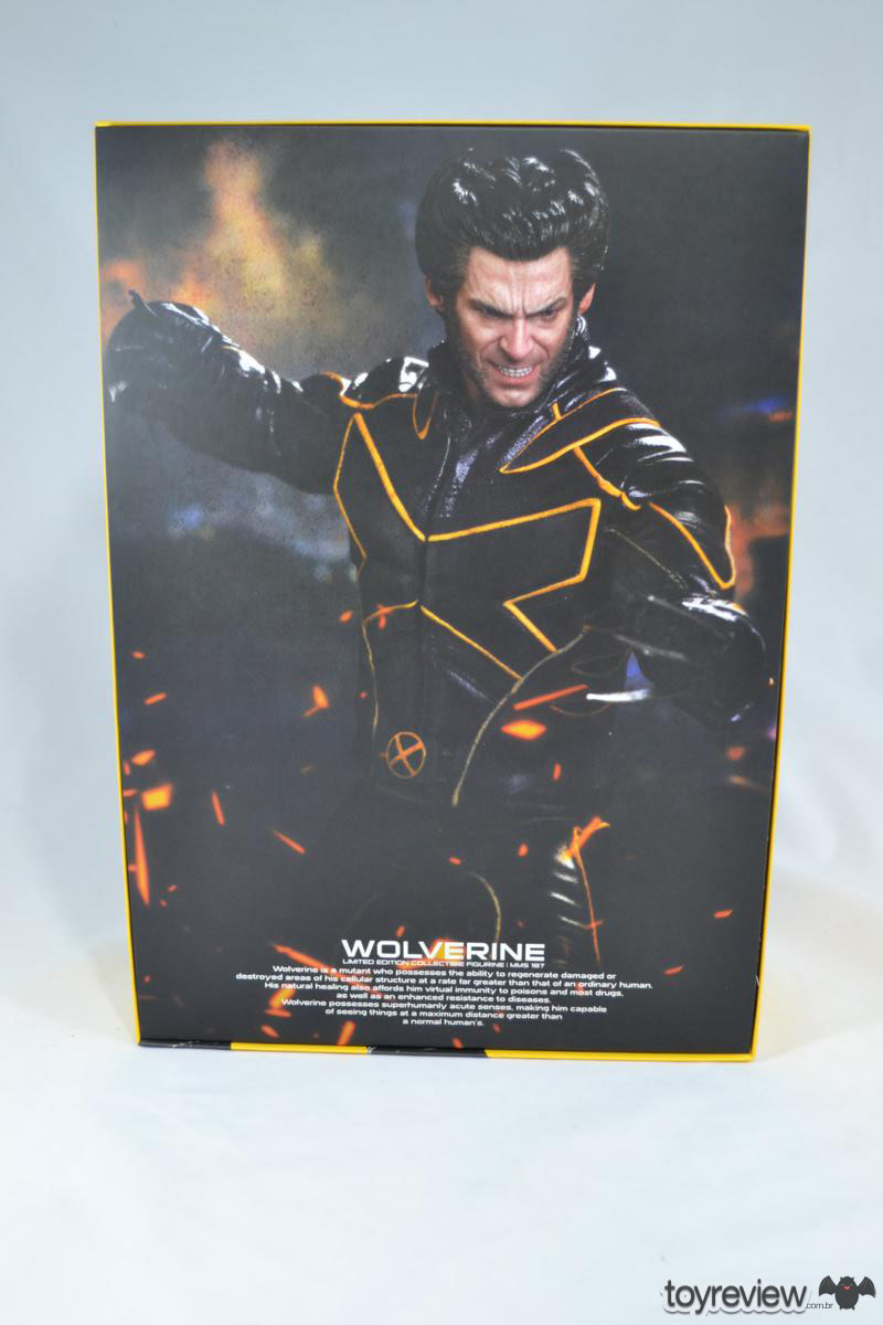 Wolverine_Last_STand_Hot_Toys_Review_ToyReview.com (6)