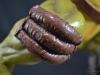 leonardo_raphael_michelangelo_donatello_tmnt_teenage_mutant_ninja_turtles_comiquette_sideshow_collectibles_nickelodeon_toyreview-com_-br-42
