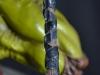 leonardo_raphael_michelangelo_donatello_tmnt_teenage_mutant_ninja_turtles_comiquette_sideshow_collectibles_nickelodeon_toyreview-com_-br-77